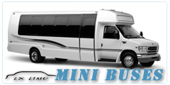 Pittsburgh Mini Bus rental