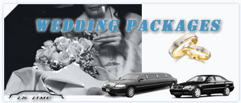 Pittsburgh Wedding Limos